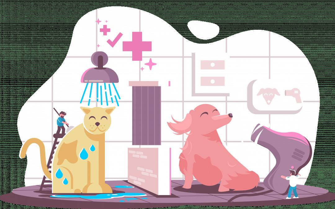 Northwest Pet Hospital Remodel & Updates