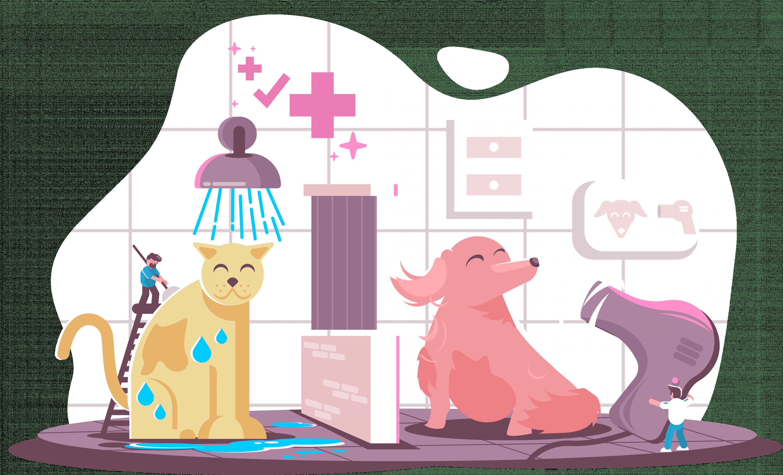 Nortwest Pet Hospital Remodel